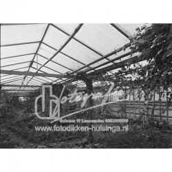 DH5173